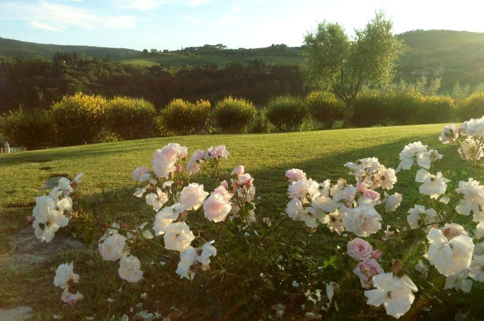 Il giardino al tramonto
