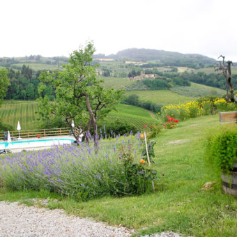 garden-swimming-pool-marronaia