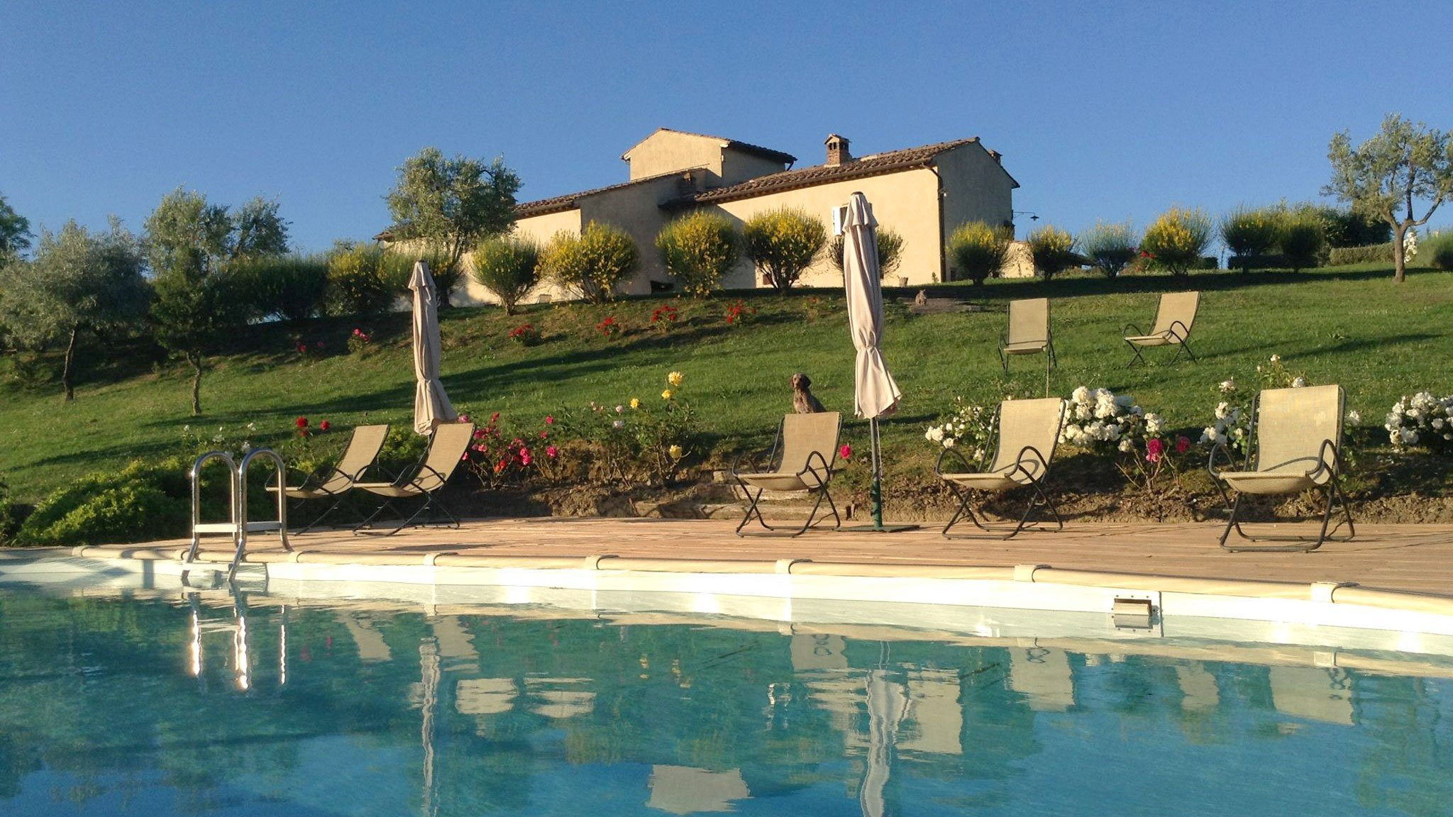 Holiday apartments in Tuscany with swimmingpool
