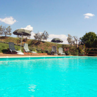 The swimming pool of the farmstead