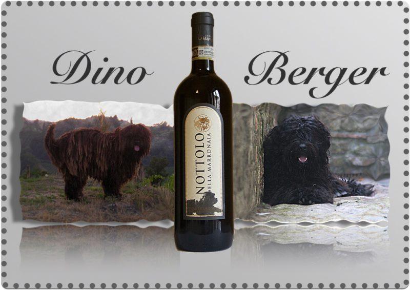 Dino e Berger