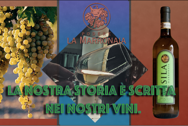 Schermata 2016 09 03 alle 11.30.12 - La Marronaia -