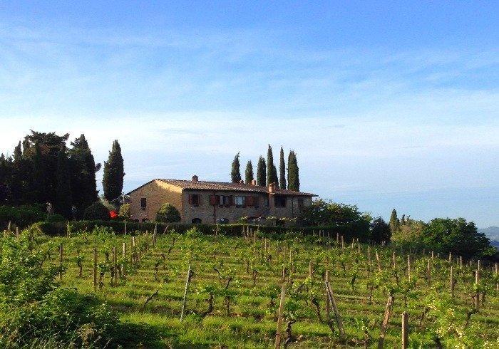 colonnevigna blog res - La Marronaia -