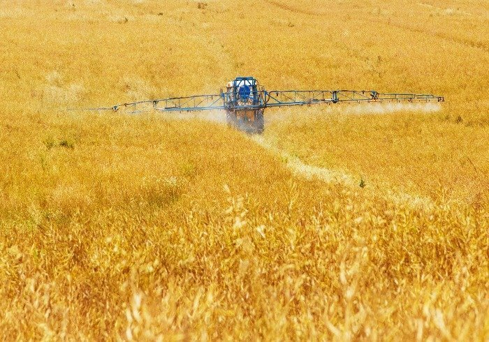 Chemical pesticides on a wheat field