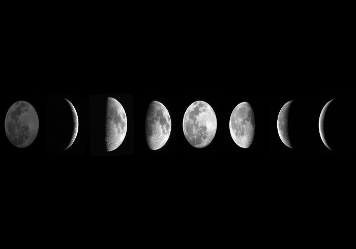 The lunar phases