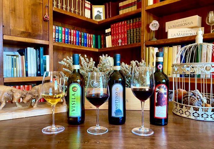 wine tour 11 - La Marronaia -