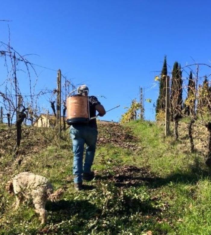 wine tour 17 - La Marronaia -