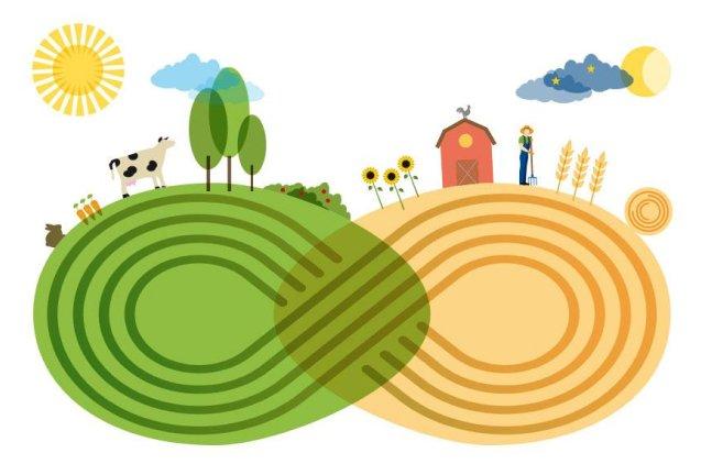 Marronaias-Biodynamic-Farm-Tuscany