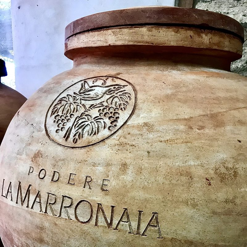 Amphora Wine - At The Origins Of Innovation